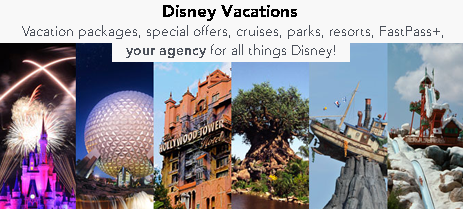 disney vacations agency