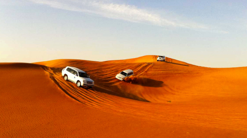 Private Liwa Oasis Full-Day Safari with Lunch by Gray Line