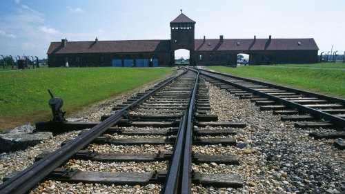 Small-Group Auschwitz-Birkenau Memorial & Museum Tour