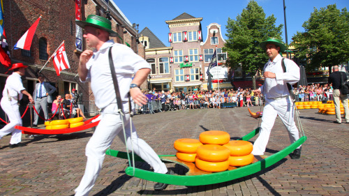 Alkmaar Cheese Market, Windmills & Dutch Countryside Tour