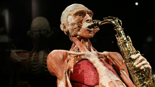 Skip-The-Line BODY WORLDS Amsterdam
