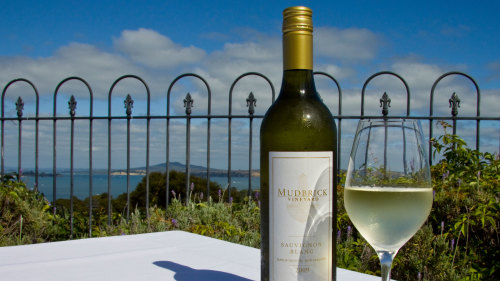 Waiheke Island Afternoon Wine Tour