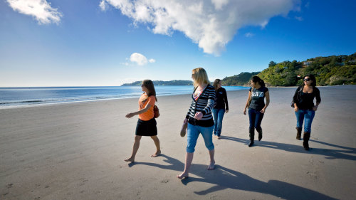Waiheke Island Explorer Tour by Fullers Group