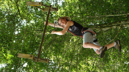 Treetop Adventure Park with Temple & Market Full-Day Tour
