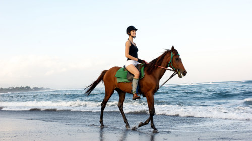 Horseback Riding on Saba Beach