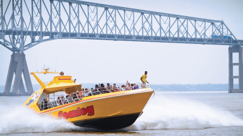 Extreme Speedboat Thrill Ride