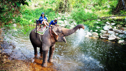 Khao Yai National Park Full Day Tour by Tour East Thailand