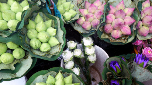 Buddhist Almsgiving & Flower Market Tour
