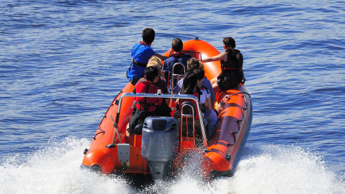 Speedboat Sightseeing Tour of the Mediterranean