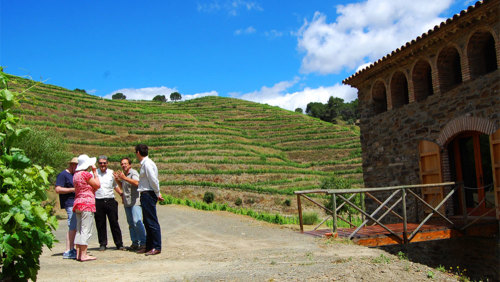 Day Trip to Priorat Region with Rustic Picnic & Winetasting