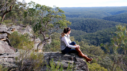 Blue Mountains High Country Day Tour