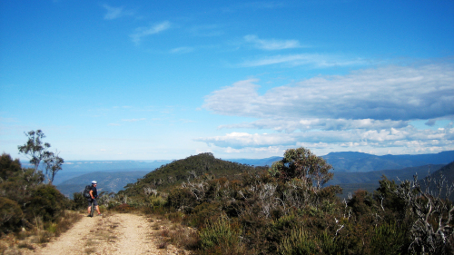 Narrow Neck Trail Mountain Biking Tour by Life