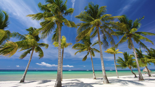 Private Panglao Island Day Tour by Baron Travel