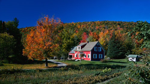 Fall Foliage Guided Excursion