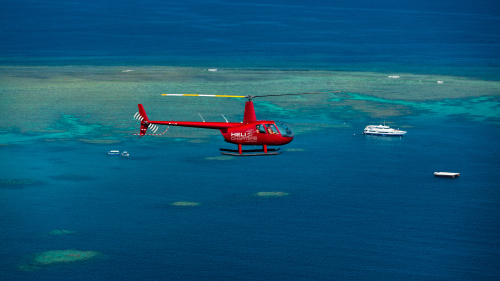 Full-Day Reef Cruise & Helicopter Flight