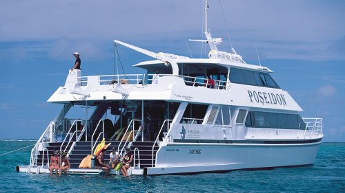 Michaelmas Cay & Reef Cruise