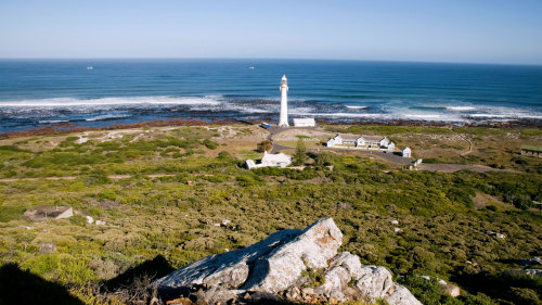 Robben Island & City Center Full-Day Tour