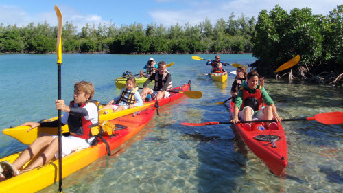 Sea Kayaking to Amber Island Half-Day Tour