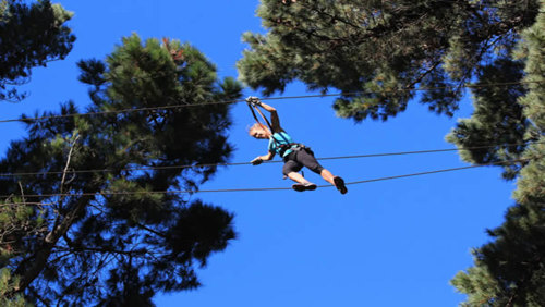 Adrenalin Forest Zipline Course