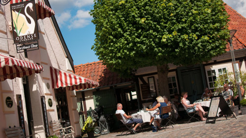 Odense Full-Day City Tour with Lunch