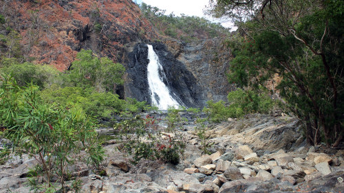 3-Day Cooktown, Daintree & Outback Small-Group Tour
