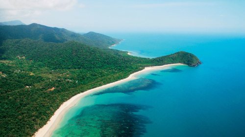 Cape Tribulation & Daintree Wilderness Tour with River Cruise