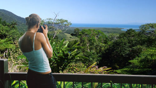 Cape Tribulation Tour by Jungle Tours & Trekking