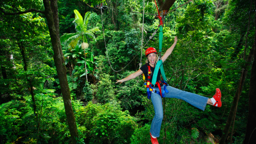 Cape Tribulation & Zipline Canopy Tour by Jungle Tours & Trekking