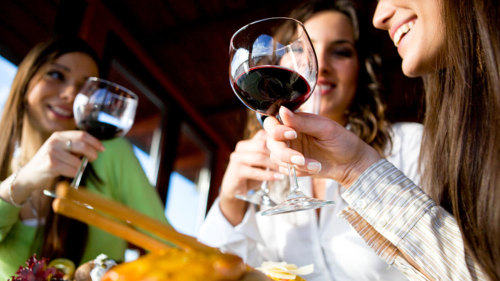 Wine Connoisseur Tour to 4 Area Wineries
