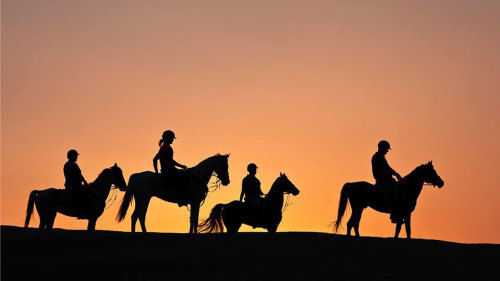 Full Moon Desert Horseback Riding Experience