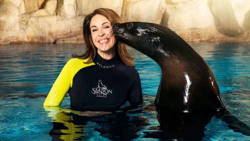 Sea Lion Point Experiences at Atlantis, the Palm