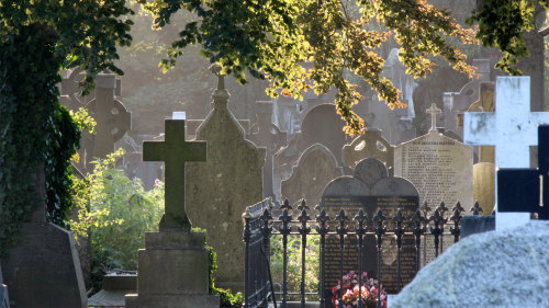 Glasnevin Cemetery Guided Tour & Museum