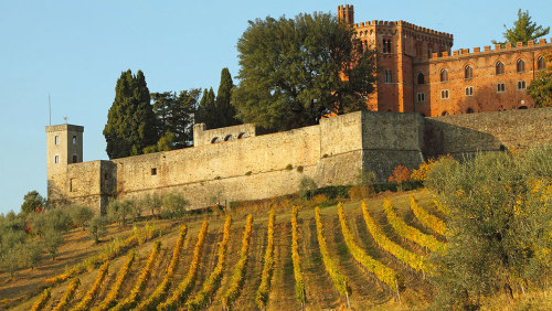 Small-Group Chianti & Castles Tour