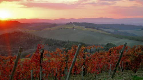 Small-Group Chianti & San Gimignano Sunset Tour with Dinner