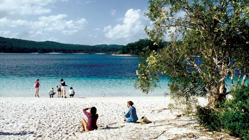 Full-day Fraser Island 4x4 Adventure Tour by Sunrover Expeditions