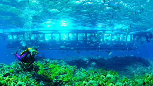 Semi-Submarine Underwater Explorer Tour