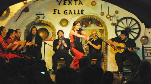 Flamenco Show at Venta El Gallo with Transportation by Granavision