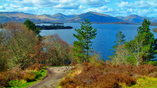 Stirling Castle, Loch Lomond & Trossach National Park Full-Day Tour