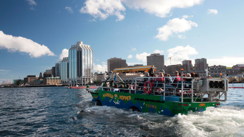 Harbour Hopper Tour
