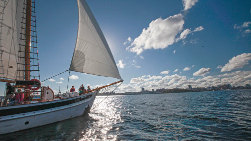 Classic Tall Ship Sailing Adventure