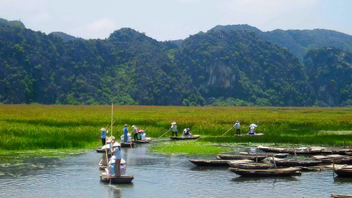 Private Kenh Ga Floating Village and Hoa Lu Tour by Threeland Travel
