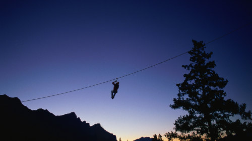 Night Zipline Adventure