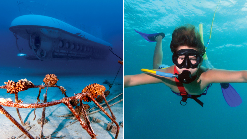 Submarine & Snorkel Combo Adventure