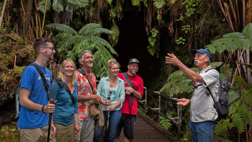 Discover Volcano Country From Hilo