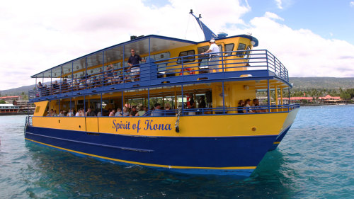 Glass-Bottom Boat Lunch Cruise & Dolphin Watching