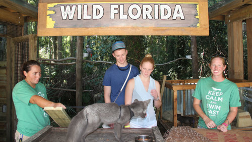 Wild Florida Behind-the-Scenes Tour