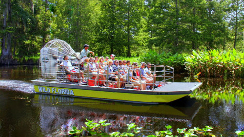 Ulitmate Airboat Ride