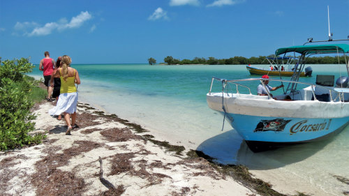 Isla Holbox Day Tour