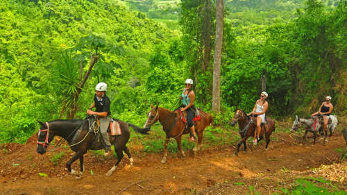 Los Suenos Horseback Riding