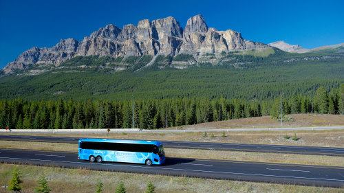 Brewster: Jasper National Park Tour & Maligne Lake Cruise